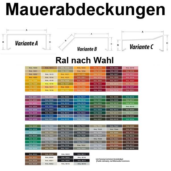 Mauerabdeckung / Attika Breite 340 mm RAL nach Wahl